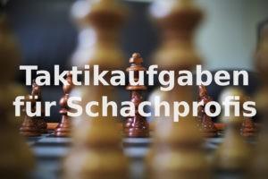Taktikaufgaben für Schachprofis #19
